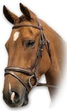Sabre Hunter Snaffle Bridle (English,  Flash & Grackle)